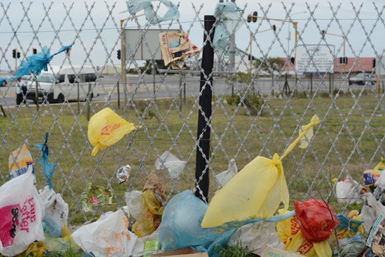 Полиэтиленовые пакеты загрязняют окружающую среду