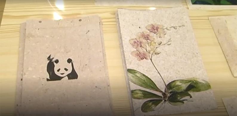 Эко-пакеты из изобретенной бумаги