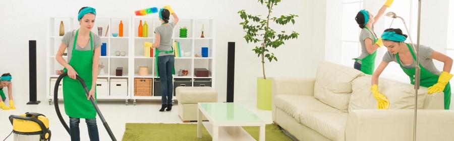 Экологичные средства для уборки квартиры