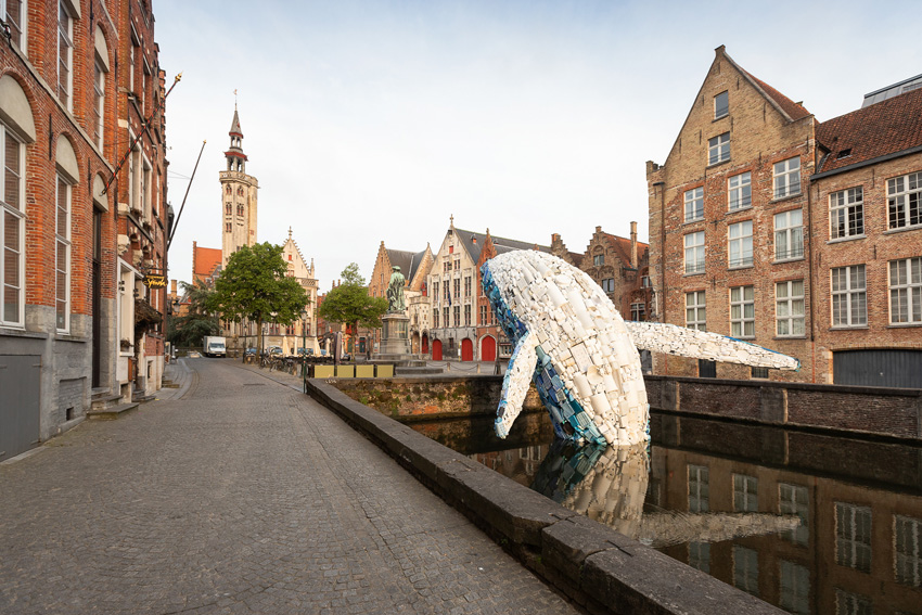 «Пластиковый» кит вынырнул из канала города Брюгге