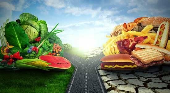 питание и экология
