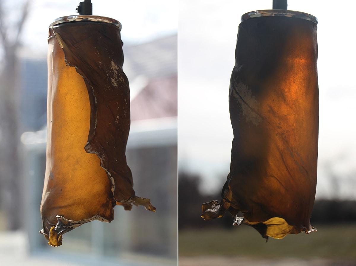 абажуры светильников из водорослей