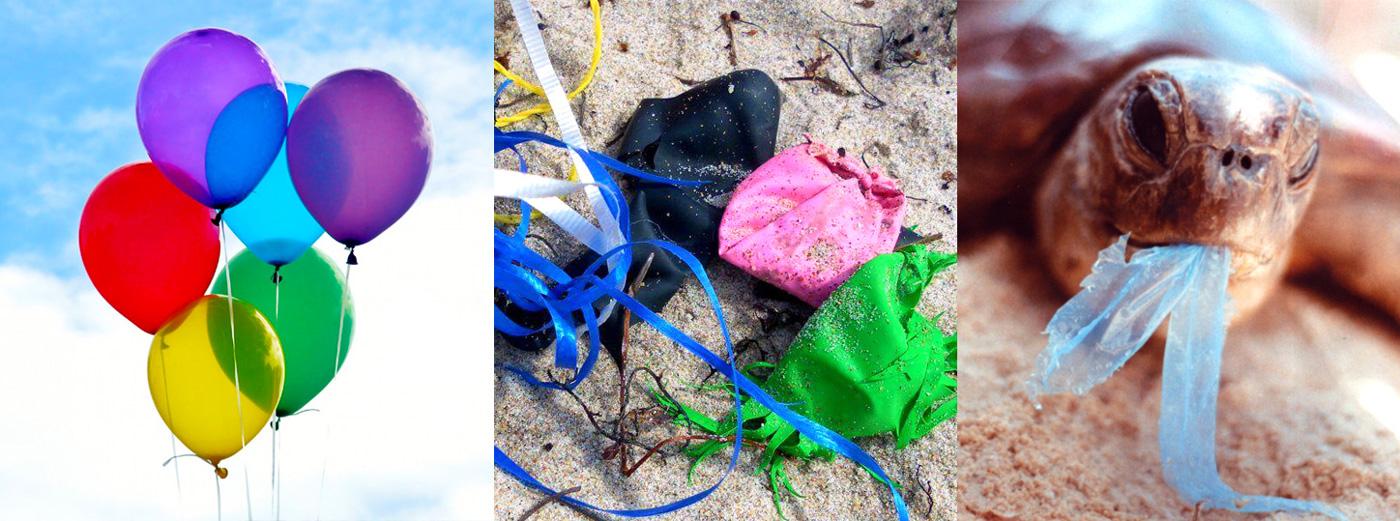 животные и сдувшиеся воздушные шарики